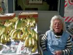 Banana erregeak azala urrezko eta etorkizuna ustel