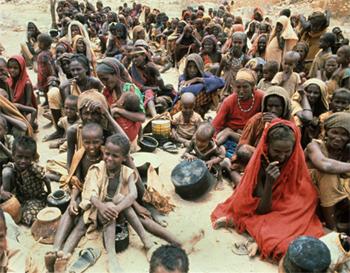 Afrikar Batasunak gosetea aztertzeko goi-bilera atzeratu du, egoera larritu arren