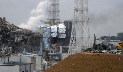Txernobyldik Fukushimara foruma (2012): biltzarraren akta baliosak liburuan bildurik