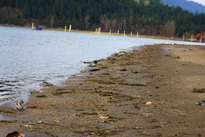 Japoniatik hondamendiak jaurti 134 zesioa iritsi da Kanadaraino