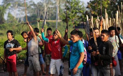 Amazoniako tribuen borroka beren zuhaitzak babesteko