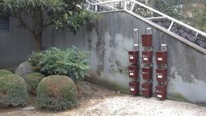 GHKren tasen igoeraren eskandalua: errefusa %11, organikoa %44-%88