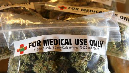 Marihuanak zelula minbizi-eragileak hiltzen dituela frogatu dute
