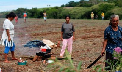 Rousseff kargutik kenduta, agro-esportatzaileek Brasilgo lurra helburu