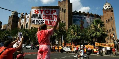 Kataluniako gobernuak zezenketen aurka egiten jarraituko du