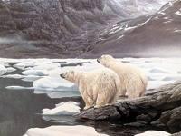Hartzak Artikoan