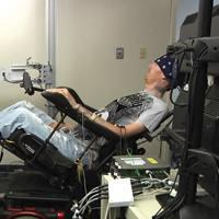 Nanoteknologia probatzen  giza garunean