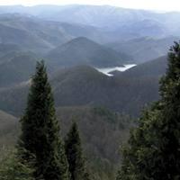A�arbeko urtegia eta basoak Urdaburuko (598 m.) gailurretik; 900 hektarea baso babestea dute helburu ekologistek.