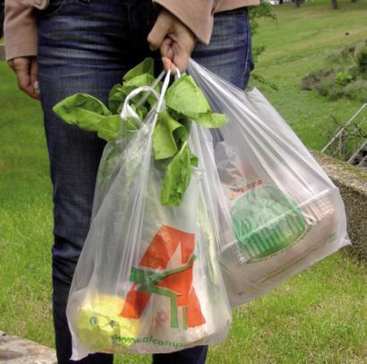 Plastikozko poltsen erabilera murriztea helburu Europan