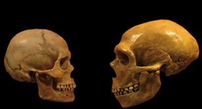 Neanderthalak bizikide izan genituen 5.000 urtez