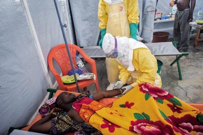 Olio palmondoen artean egosi ote da Ebola izurri berria?