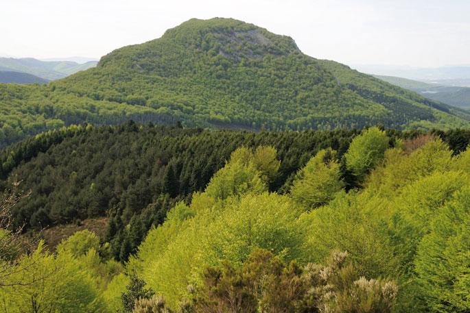 Oriol mendia,Aramaioko Oleta auzotik gora.