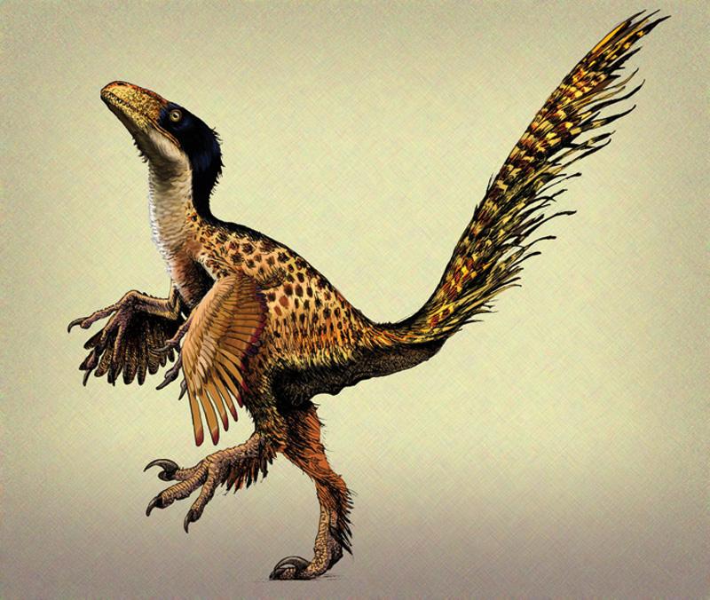Dinosauroek ez zuten orro egiten