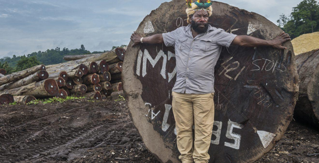 'Frères des arbres' dokumentaletik hartutako irudian, Mundiya Kepanga –Huli leinukoen buruko eta sudurra trabesten dion apaingarri eta guzti– bere sorterritik eramandako enbor erraldoietako baten tamaina erakusten, Txinara zura esportatzeko Papua Ginea Be