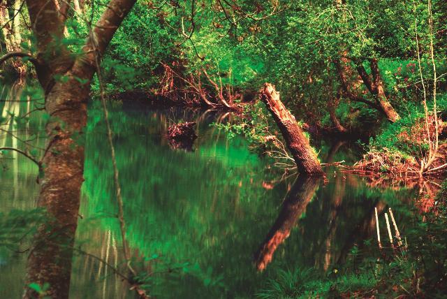 Lotura zuzena da, nekazaritza intentsiboagoa eta pestizida aztarna gehiago ibaietan.  Ebro ibaia Espainiako Estatuko bigarren kutsatuena da, eta EAEkoak hirugarrenak.  EAEko ibaietan topatutako 17 substantzietatik 15 legez kanpokoak dira.
