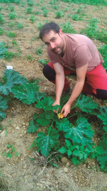 Argazkia: Berpiztu Agrokultura.