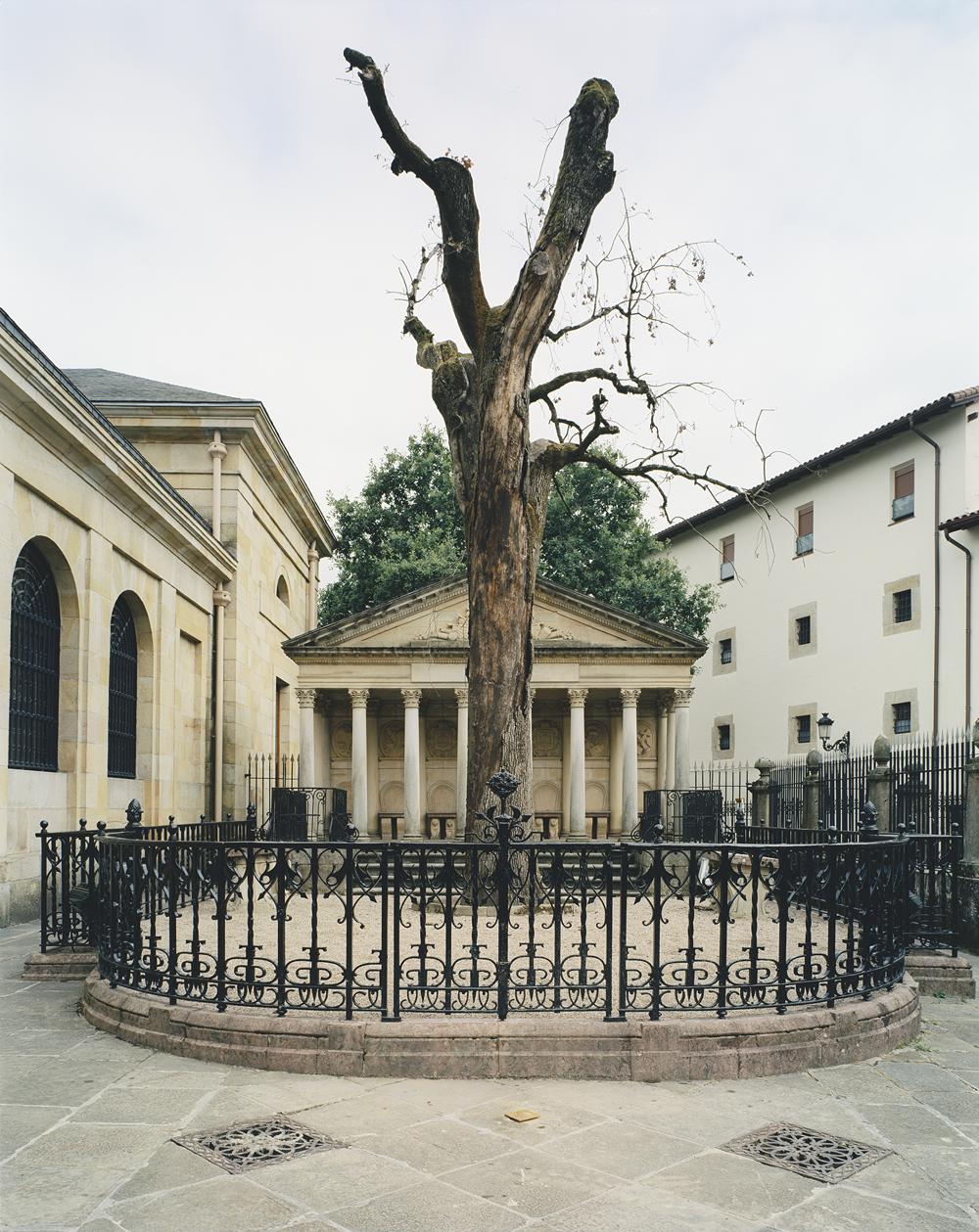 Dead tree. Gernika 2004 (2004). C Print. 125 x 175 cm.