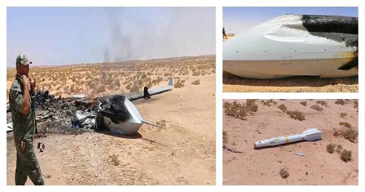 Wing Loongs drone txinatarra, Libian lurreratua. Argazkia: Fighter Jets World