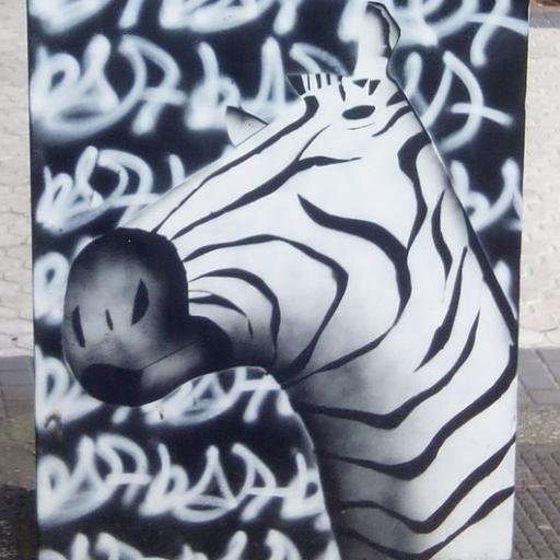 Zebrabidea